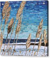 Wintertime On Lake Erie Acrylic Print