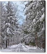 Wintery Country Road Acrylic Print