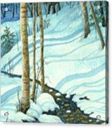 Wintrbrook Acrylic Print