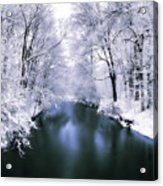 Wintry White Acrylic Print