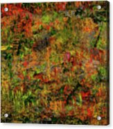Wisps Of Autumn Acrylic Print