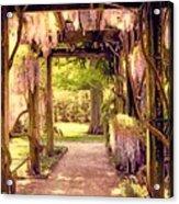 Wisteria In Watercolor Acrylic Print