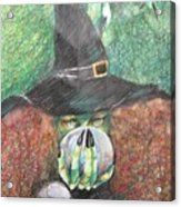 Witch In Action Acrylic Print by Brigitte Hintner