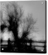 Witching Tree Acrylic Print