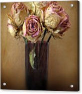 Withered Beauty Acrylic Print