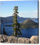 Wizard Island With Rock Fence At Crater Lake Acrylic Print