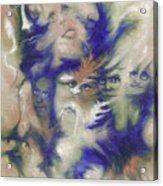 Wizard's Dream Acrylic Print
