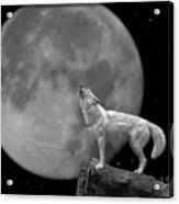 Wolf And Moon Acrylic Print
