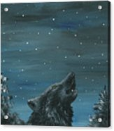 Wolf And The Stars Acrylic Print