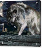Wolf At Night Acrylic Print