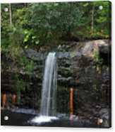 Wolf Creek Falls Acrylic Print
