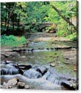 Wolf Creek Acrylic Print by Kathleen Struckle