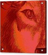 Wolf Flower Acrylic Print