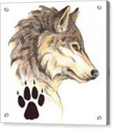 Wolf Head Profile Acrylic Print