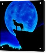 Wolf Howling  Acrylic Print