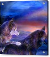 Wolf Mates Acrylic Print