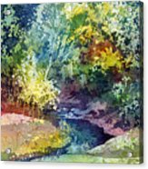 Wolf Pen Creek Acrylic Print