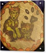 Wolf Pup Drum Acrylic Print