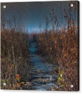 Wolf Road Prairie Trail Acrylic Print