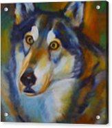 Wolf Spirit Acrylic Print