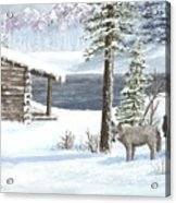 Wolfs In Winter Acrylic Print