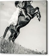 Woman In Dress Riding Chestnut Black Rearing Stallion Acrylic Print