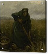 Woman Lifting Potatoes Nuenen, July - August 1885 Vincent Van Gogh 1853 - 1890 Acrylic Print