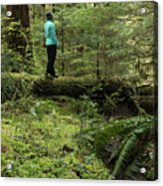 Woman On A Moss Covered Log In Olympic National Park Acrylic Print