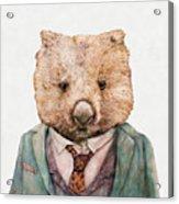 Wombat Acrylic Print