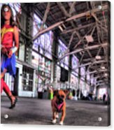 Wonder Girl And Super Pup Acrylic Print