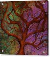 Wonder Tree Acrylic Print