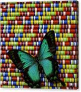Wonderful Green Butterfly Acrylic Print