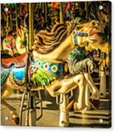 Wonderful Horse Ride Acrylic Print