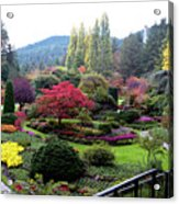 Wonderful Sunken Garden In The Butchart Gardens,victoria,canada 1. Acrylic Print