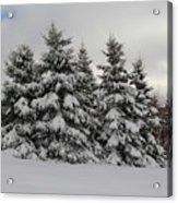 Wonderful Winter Acrylic Print