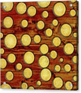 Wood And Gold Acrylic Print
