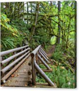 Wood Bridge Over Butte Creek Acrylic Print