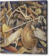 Wood Creatures Acrylic Print