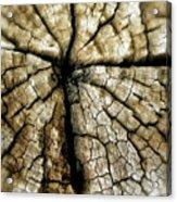 Wood Cross Acrylic Print by Tina Valvano