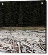 Wood Forest At Duffy Lake Acrylic Print