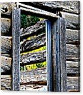 Wood Grain Acrylic Print