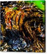 Wood Ridges Acrylic Print