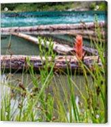Wood River 07 Acrylic Print