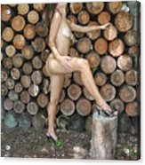 Wood Shed 269 Acrylic Print