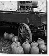 Wood Wagon And Pumpkins Black And White Acrylic Print