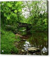 Wooded Valley Of The Patapsco River North Branch Maryland Acrylic Print