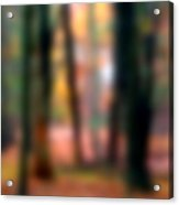 Wooded Wonderland Acrylic Print