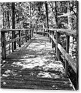 Wooden Boardwalk B Acrylic Print