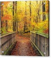 Wooden Bridge   Hdr Acrylic Print