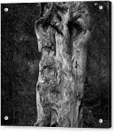 Wooden Face 2 Acrylic Print
